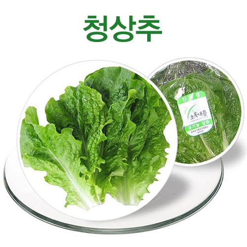 [용천유기]청상추(150g)
